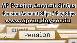 AP Pensioners Pension Amount Status Account Slips